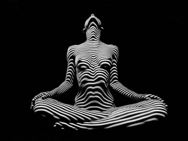 9934-dja Lotus Position In Zebra Stripes  Art Print