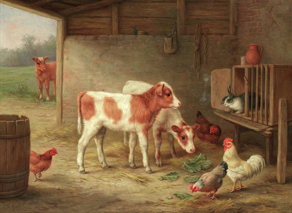 Wall Art - Painting - A Barn Interior With Two Ayrshire Calves, A Cockerel, Hens And A Rabbit by Walter hunt