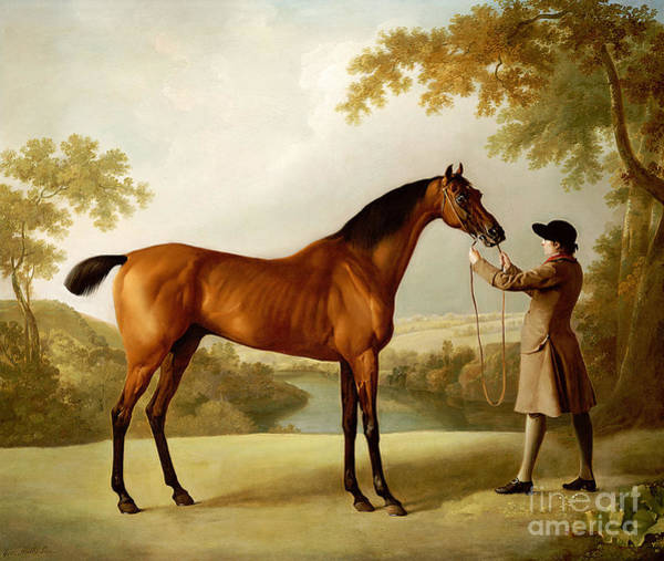 Reins Painting - A Bay Racehorse Held By A Groom In An Extensive Landscape by George Stubbs
