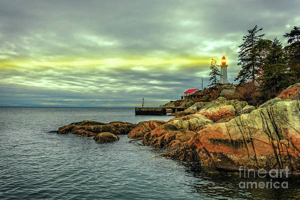 Canada Wall Art - Photograph - A Beam Of Light In The Darkness. by Viktor Birkus