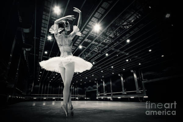 Photograph - A Beautiful Ballerina Dancing In Studio by Dimitar Hristov