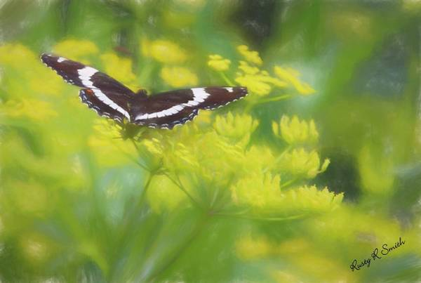 Digital Art - A Beautiful Swallowtail Butterfly On A Yellow Wild Flower by Rusty R Smith