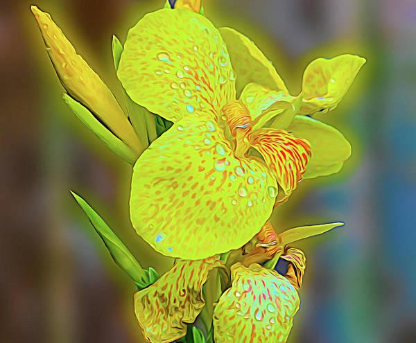 Digital Art - A Beautiful Yellow Flower by Rusty R Smith