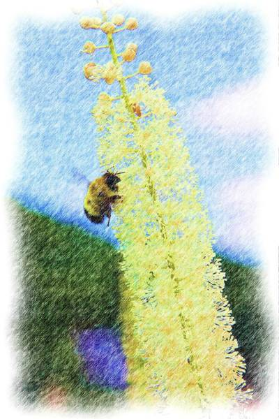 Digital Art - A Bee On A Flower by Rusty R Smith