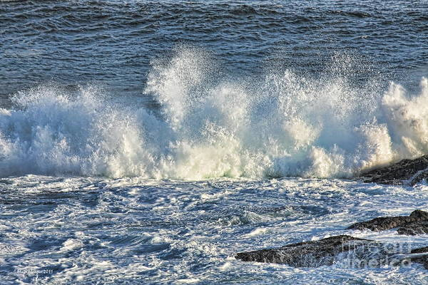Photograph - A Big Splash by Elaine Teague