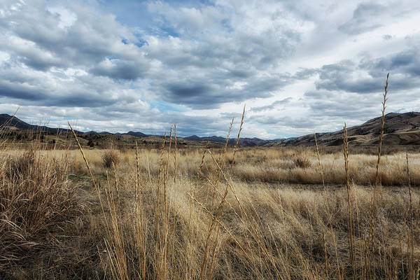 Photograph - A Bit Of Central Oregon by Belinda Greb