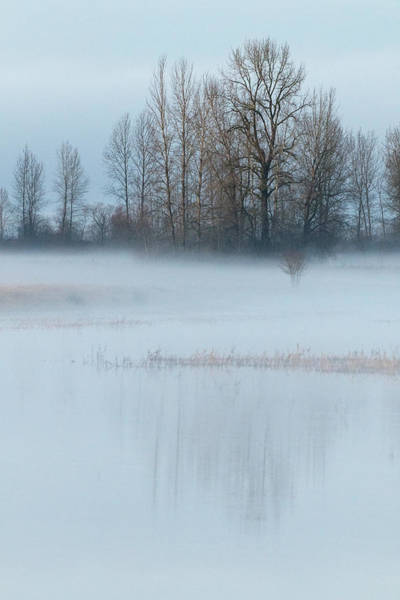 Wall Art - Photograph - A Blanket Of Fog by Angie Vogel