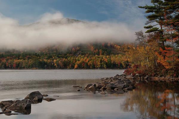 Photograph - A Blanket Of Fog by Darylann Leonard Photography