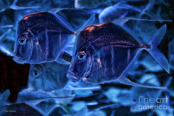 Photograph - A Blue Swim by Blake Richards