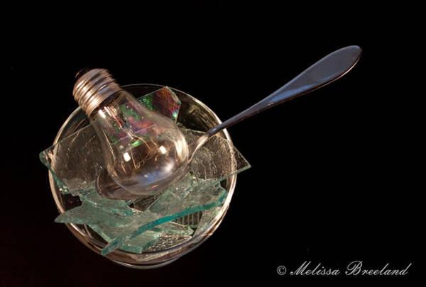 Nikon D5000 Photograph - A Bowl Of Stupid by Melissa Wyatt