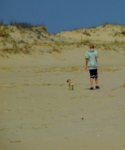 Photograph - A Boy And His Pug by Trish Tritz