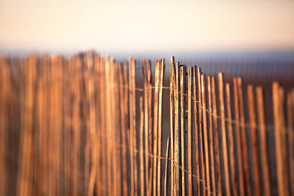 Wall Art - Photograph - A Break In The Fence by Eric Gendron
