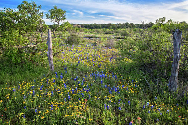 Photograph - A Breath Of Fresh Hill Country Air by Lynn Bauer