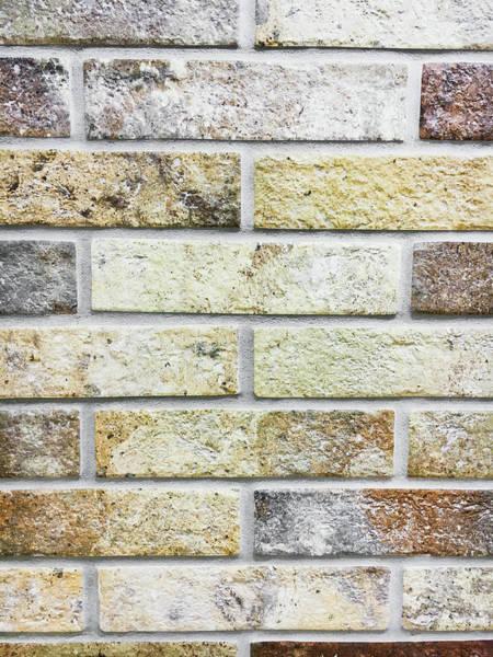 Wall Art - Photograph - A Brick Wall by Tom Gowanlock