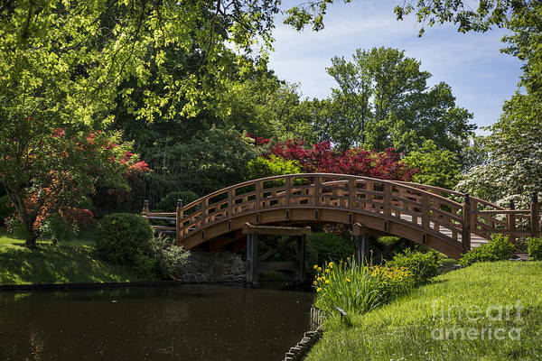 Photograph - A Bridge To Cross by Andrea Silies