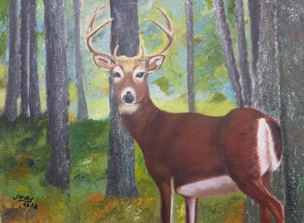 Wall Art - Painting - A Buck In The Woods by Judy Jones