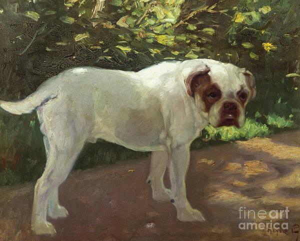 Wall Art - Painting - A Bulldog On A Garden Path by Arthur Heyer