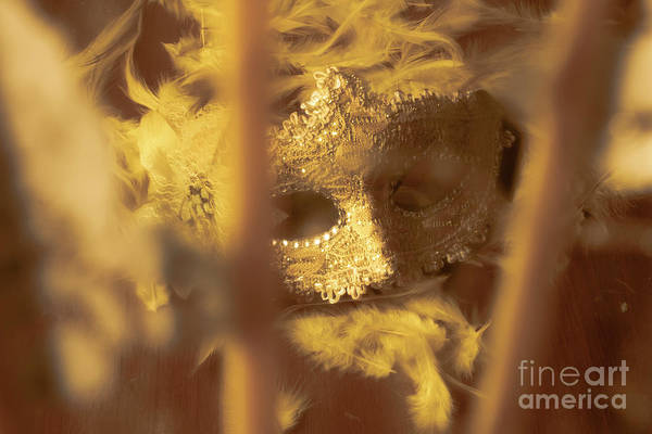 Masquerade Wall Art - Photograph - A Cabaret Mystery by Jorgo Photography - Wall Art Gallery