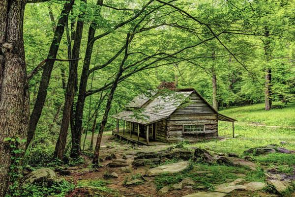 Photograph - A Cabin In The Woods by Kay Brewer