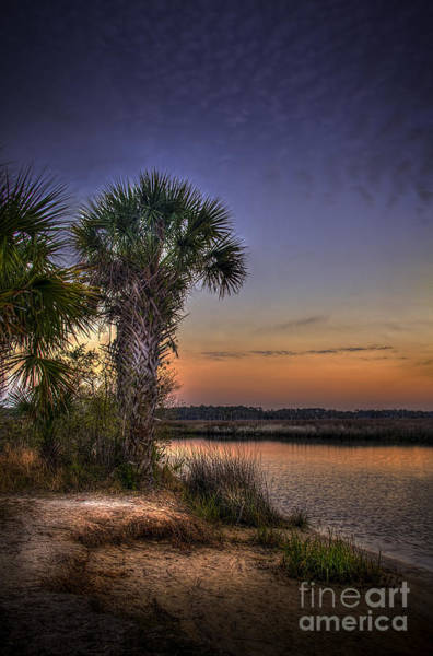 Pine Grove Photograph - A Calm Reality by Marvin Spates