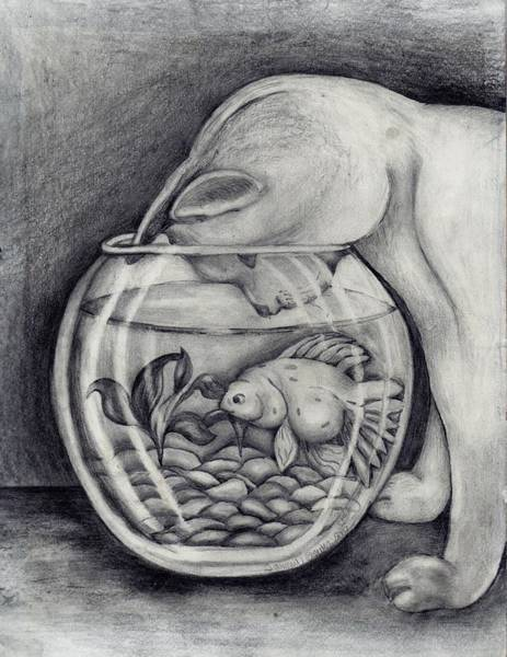 Distribution Drawing - A Cat And A Fish In A Bowl by Tammy Brewer