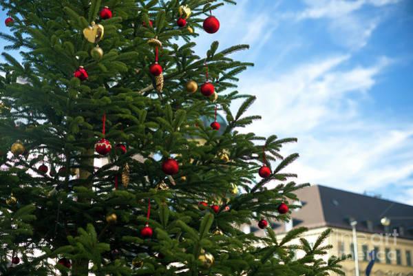 Photograph - A Christmas Tree In Munich by John Rizzuto