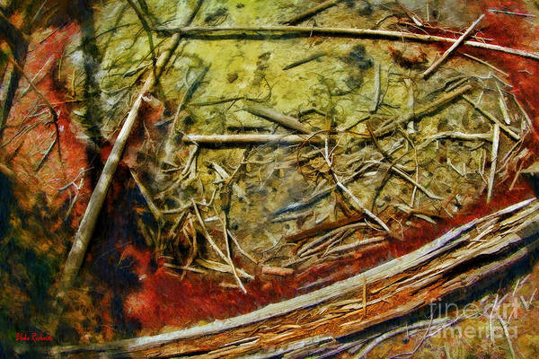 Photograph - A Cistern Spring Water Pool by Blake Richards