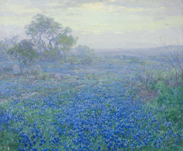 Painting - A Cloudy Day, Bluebonnets by Julian Onderdonk
