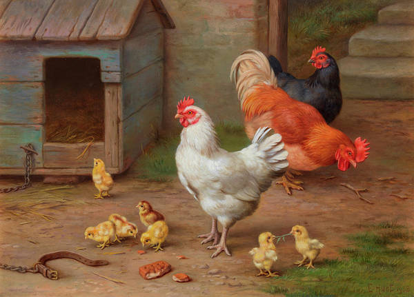 Wall Art - Painting - A Cockerel, Hens And Chicks By A Pail by Edgar Hunt