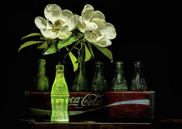 Photograph - A Coke And Magnolia Still Life by JC Findley