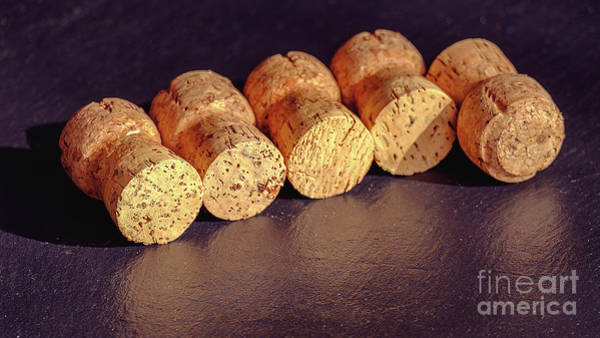 Photograph - A Cork Collection From A Prosecco by Marina Usmanskaya