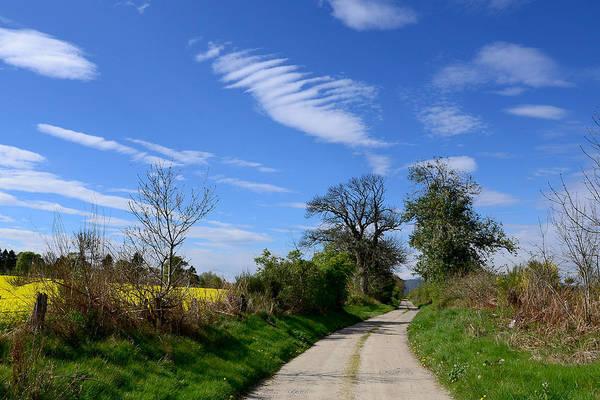 Photograph - A Country Lane by Gavin MacRae