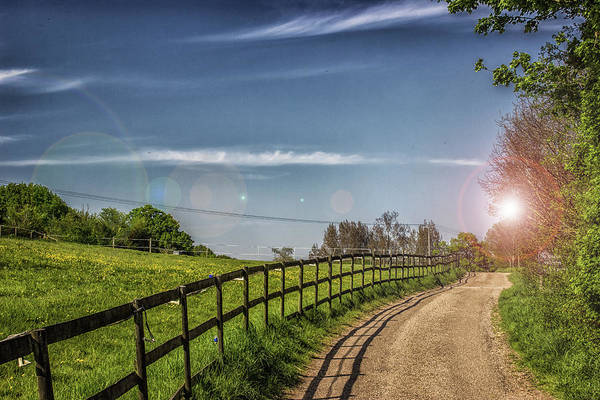 Wall Art - Photograph - A Country Lane by Martin Newman