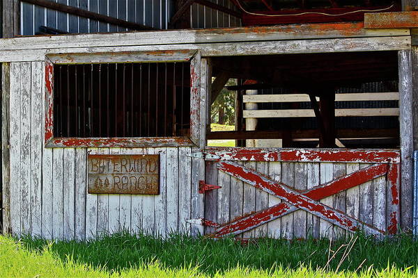 Photograph - A Country Scene by Diana Hatcher
