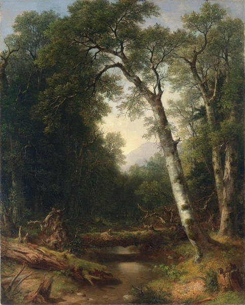 Ditch Painting - A Creek In The Woods by Asher B Durand