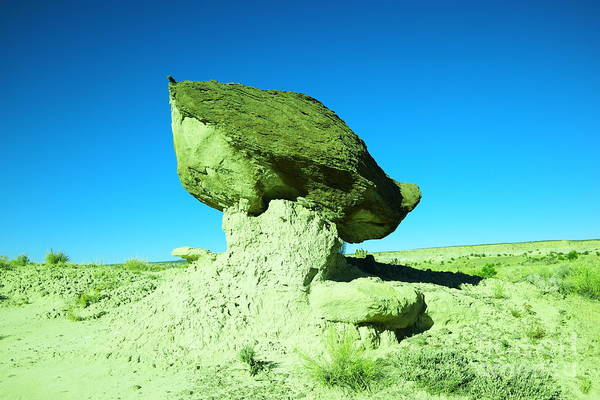 Middle Of Nowhere Photograph - A Crooked Toad Stool New Mexico by Jeff Swan