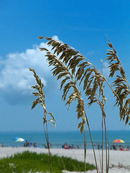 Photograph - A Day At The Beach - Cocoa Beach Fl by Frank Mari