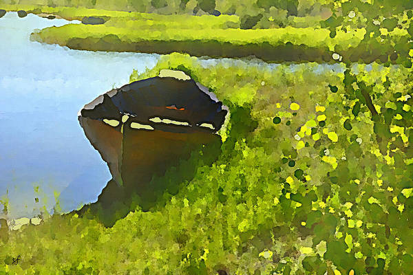 Digital Art - A Day At The Pond by Shelli Fitzpatrick
