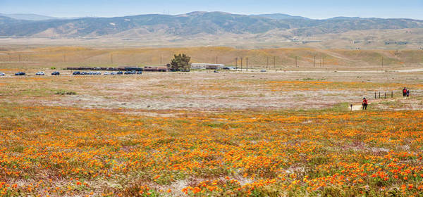 Photograph - A Day At The Reserve by Gene Parks