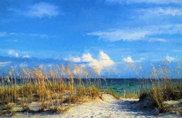Wall Art - Photograph - A Day In The Life In South Walton by JC Findley