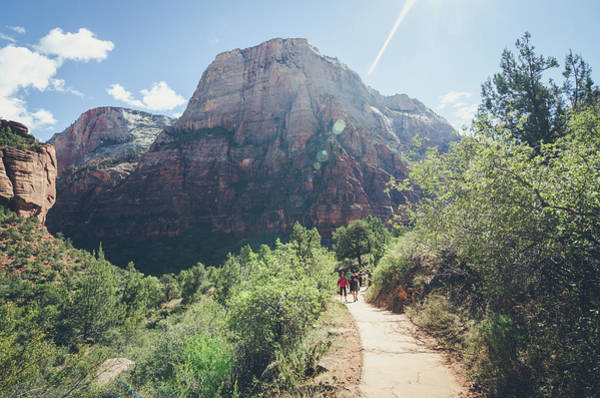 Photograph - A Day In Zion by Margaret Pitcher
