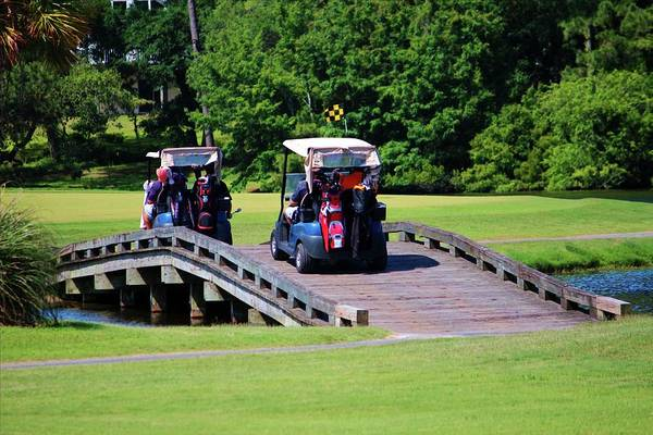 Photograph - A Day Of Golf by Cynthia Guinn