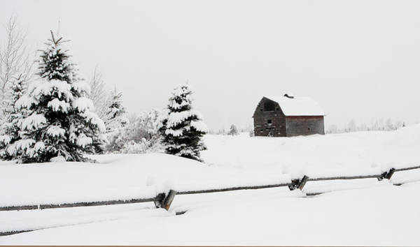 Photograph - A Day Of Snow by Ronnie and Frances Howard
