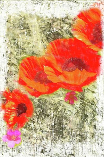 Photograph -  Red Poppies In Full Bloom by Rusty R Smith