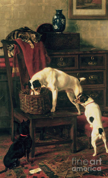Drawers Painting - A Discreet Inquiry by Rupert Arthur Dent