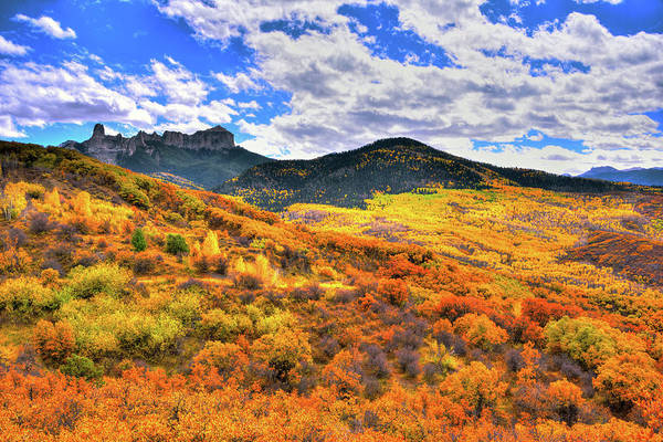 Grand Mesa National Forest Photograph - A  Distant Dream by Midori Chan