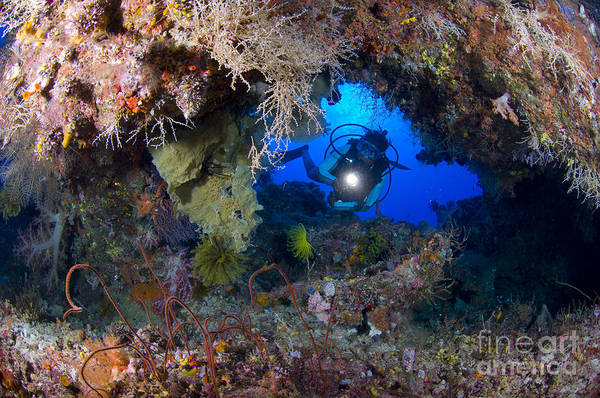 Kimbe Bay Wall Art - Photograph - A Diver Peers Through A Coral Encrusted by Steve Jones