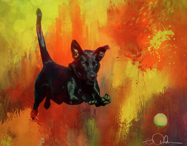 Digital Art - A Dog And Her Ball by Gloria Anderson