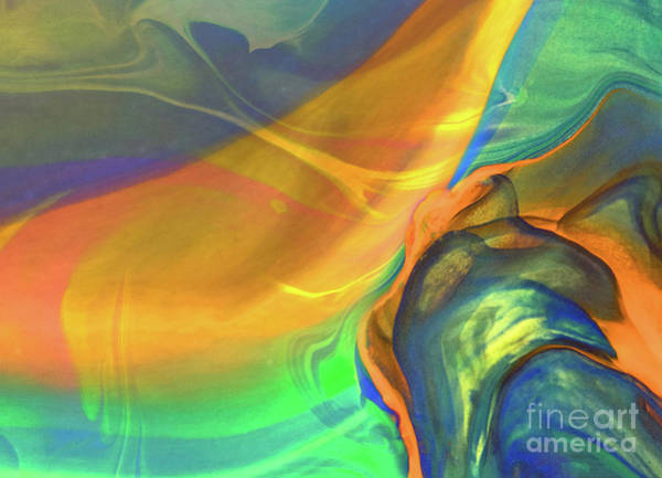 Photograph - A Dream Within by Patti Schulze