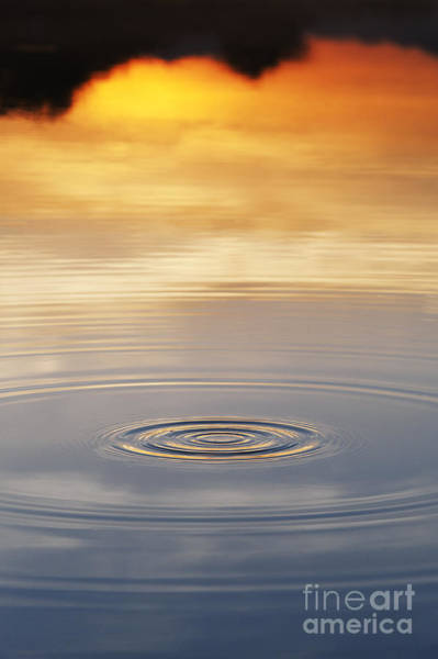 Rippling Photograph - A Drop In The Ocean  by Tim Gainey